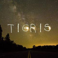 ティグリスさん