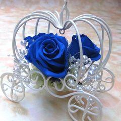 青い薔薇さん